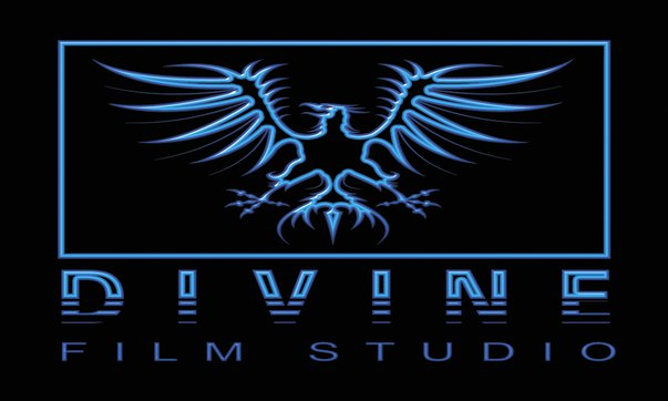 Divine Film Studio shot our first event which was an engagement.